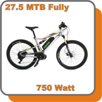 E-Bike MTB Fully Extra E-Bike 750W 48V 13,6ah Akku