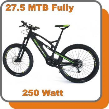 E-Bike MTB Carbon Fully Raptor E-Bike 250W 36V 17,0ah Akku